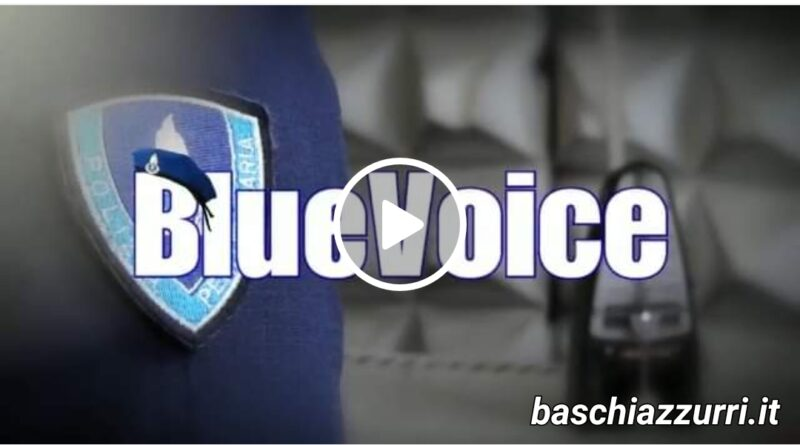Video bluevoice